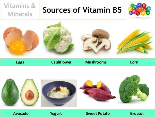 Vitamine b5 et b6