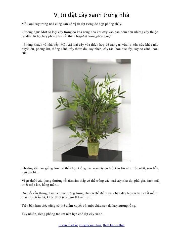 Vị trí đặt cây xanh trong nhàMỗi loại cây trong nhà cũng cần có vị trí đặt riêng để hợp phong thủy.- Phòng ngủ: Một số loạ...