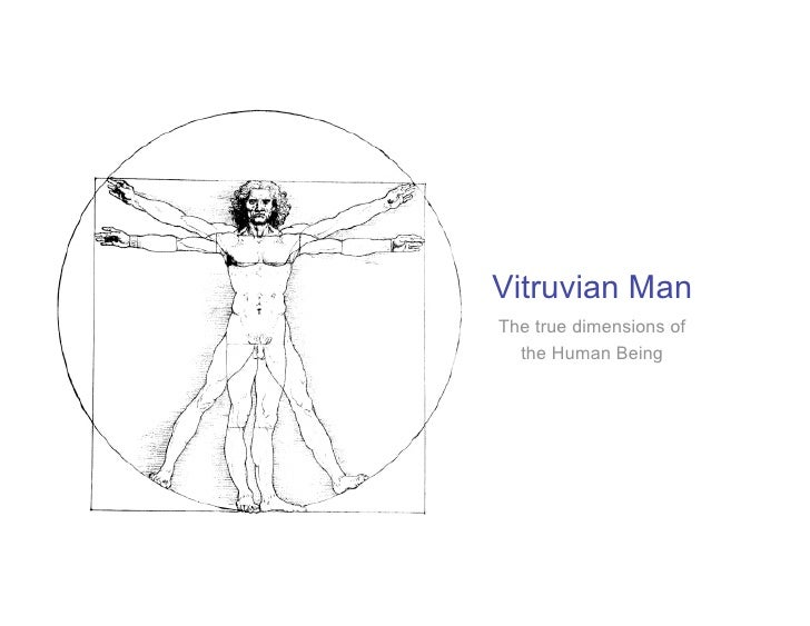 Vitruvian Man The true dimensions of   the Human Being