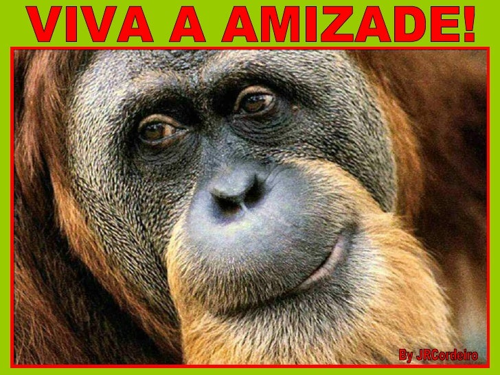 VIVA A AMIZADE! By JRCordeiro