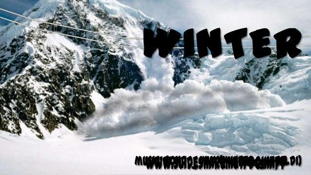 Viva winter