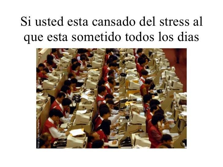 Si usted esta cansado del stress al que esta sometido todos los dias
