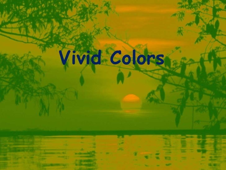 Vivid Colors of life in nature