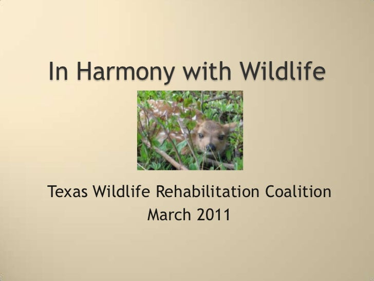 In Harmony with Wildlife<br />Texas Wildlife Rehabilitation Coalition<br />March 2011<br />