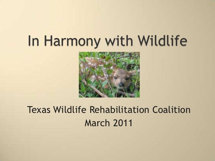 In Harmony With Wildlife