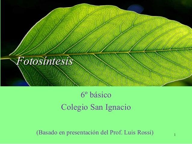 FotosíntesisFotosíntesis 6º básico Colegio San Ignacio (Basado en presentación del Prof. Luis Rossi) 1