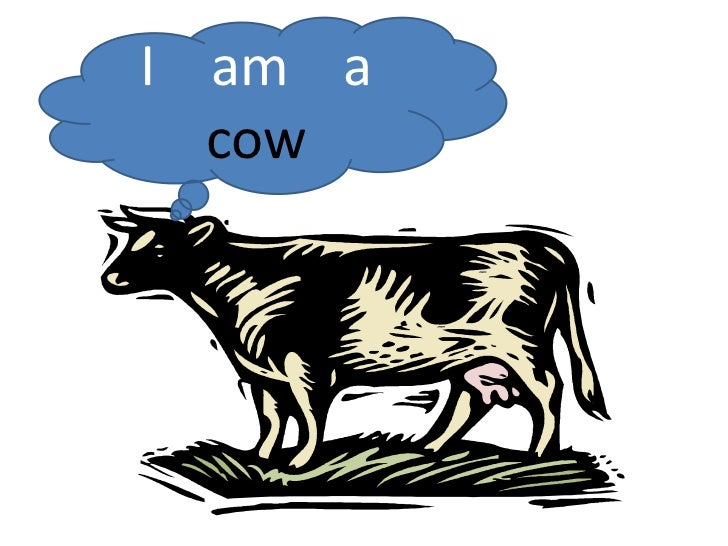 I    am    a cow<br />