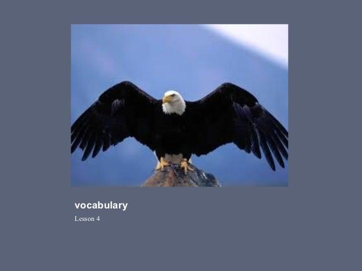 Vocabulary lesson 4