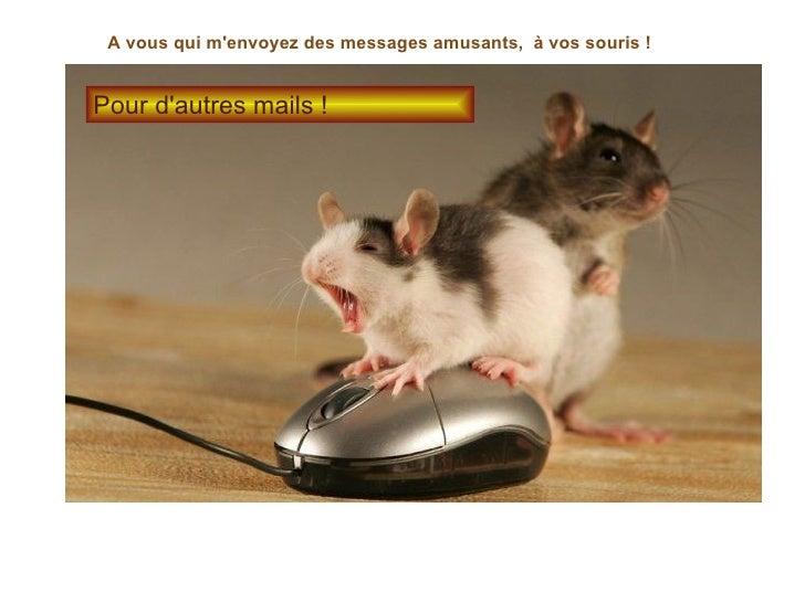 A vous qui m'envoyez des messages amusants,  à vos souris ! Pour d'autres mails !