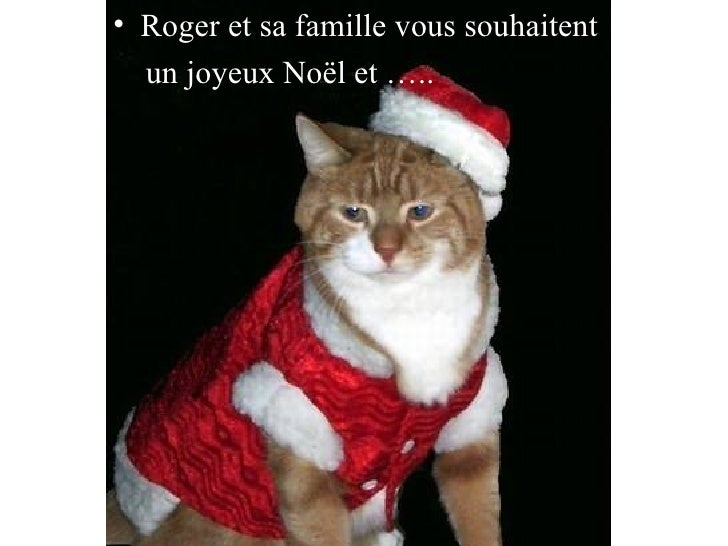 <ul><li>Roger et sa famille vous souhaitent </li></ul><ul><li>un joyeux Noël et ….. </li></ul>