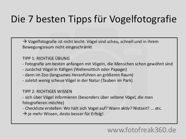 Die 7 besten Tipps für Vogelfotografie www.fotofreak360.de  Vogelfotografie ist nicht leicht: Vögel sind scheu, schnell u...