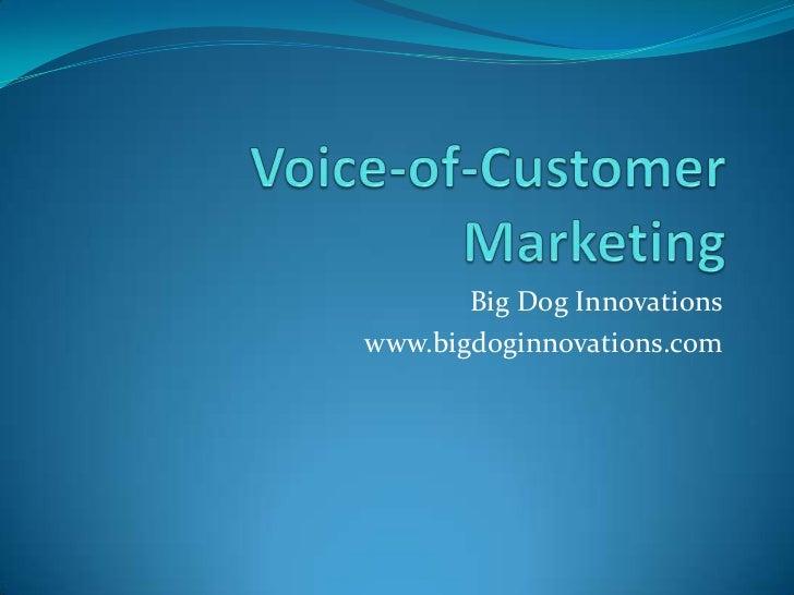 Voice-of-Customer Marketing<br />Big Dog Innovations<br />www.bigdoginnovations.com<br />