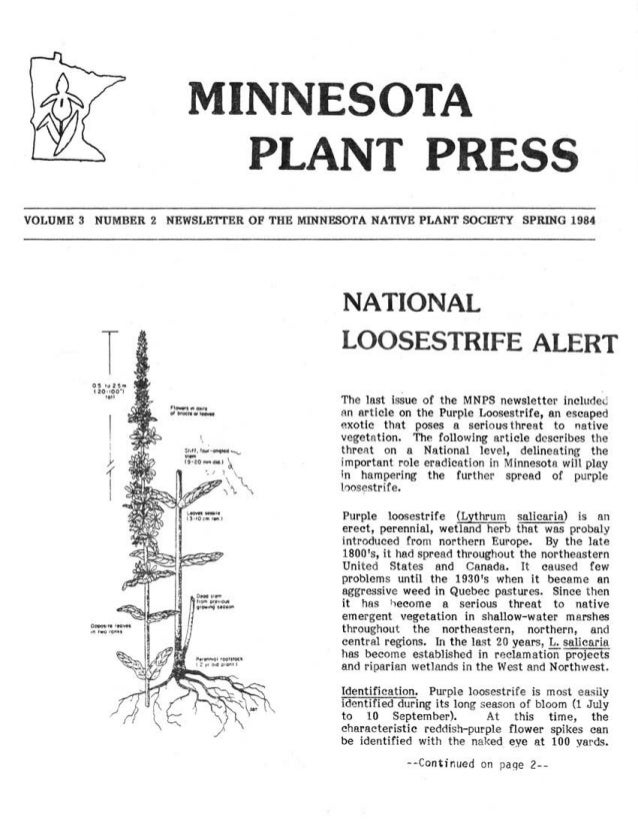 Spring 1984 Minnesota Plant Press