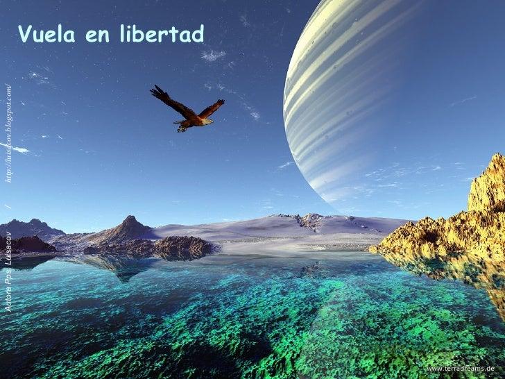 Volando En Libertad