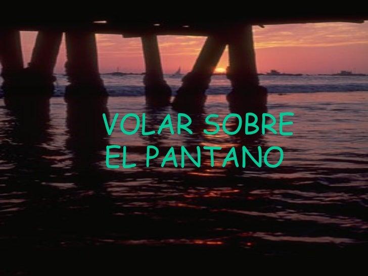 VOLAR SOBRE EL PANTANO