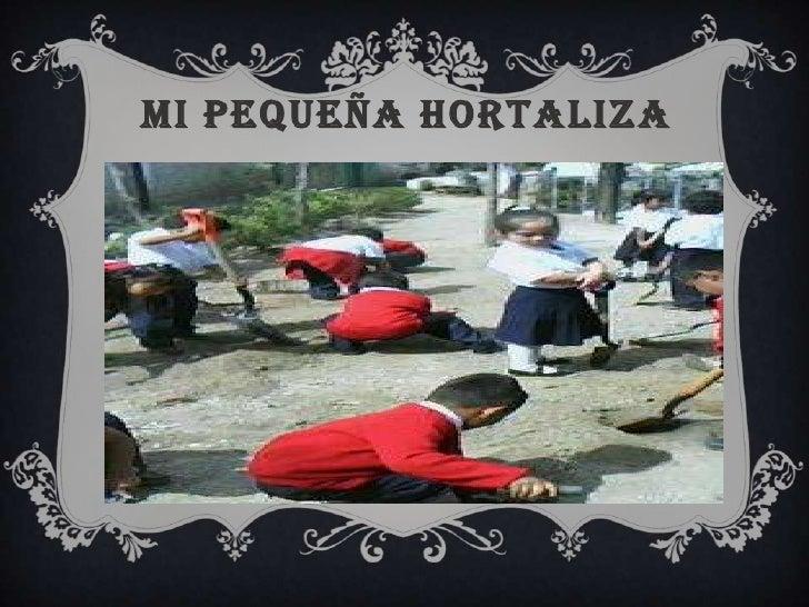 MI PEQUEÑA HORTALIZA<br />