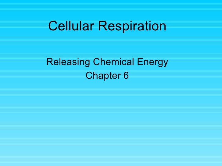 Cellular Respiration Releasing Chemical Energy Chapter 6