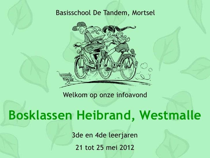 Basisschool De Tandem, Mortsel         Welkom op onze infoavondBosklassen Heibrand, Westmalle           3de en 4de leerjar...