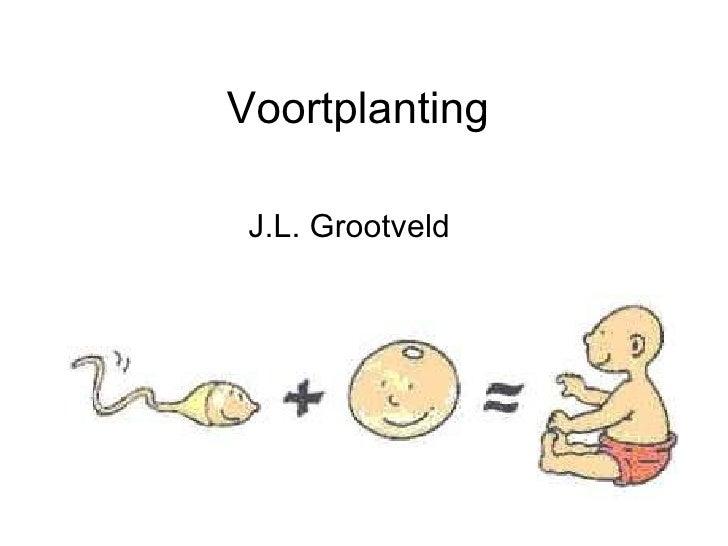 Voortplanting