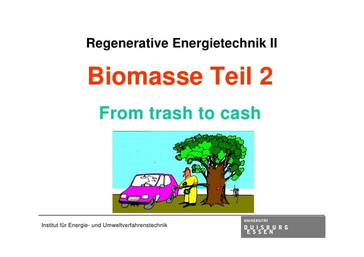 Vorlesung 2009 biomasse2