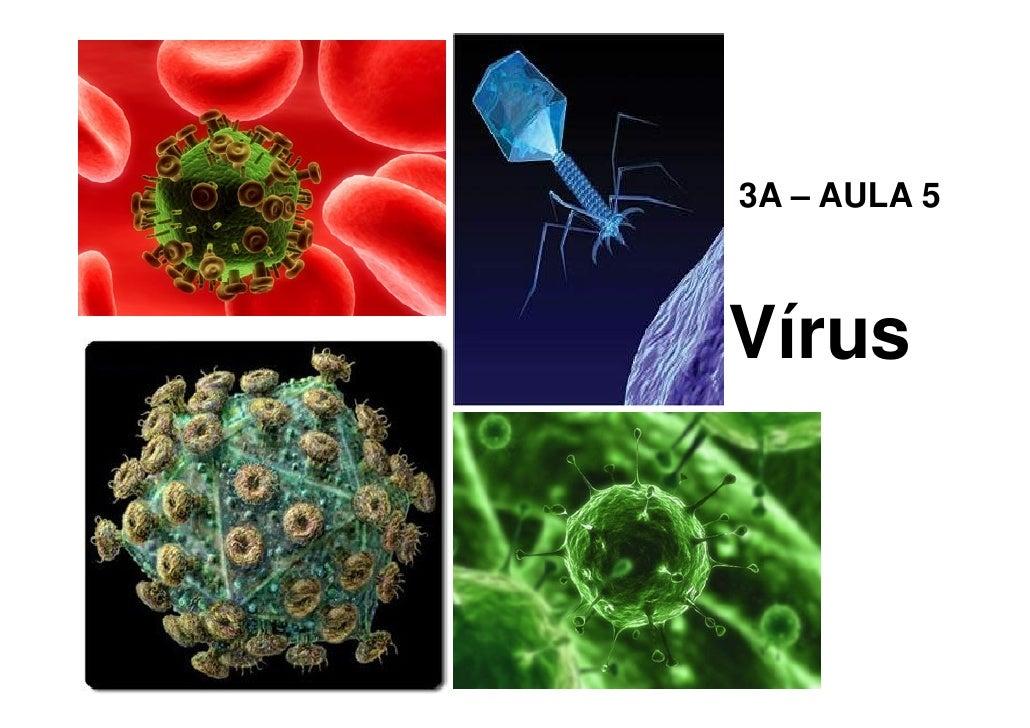 Vírus, procariontes, eucariontes e revestimentos celulares