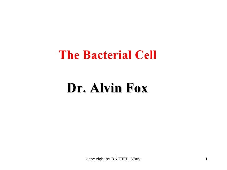 Dr. Alvin Fox The Bacterial Cell