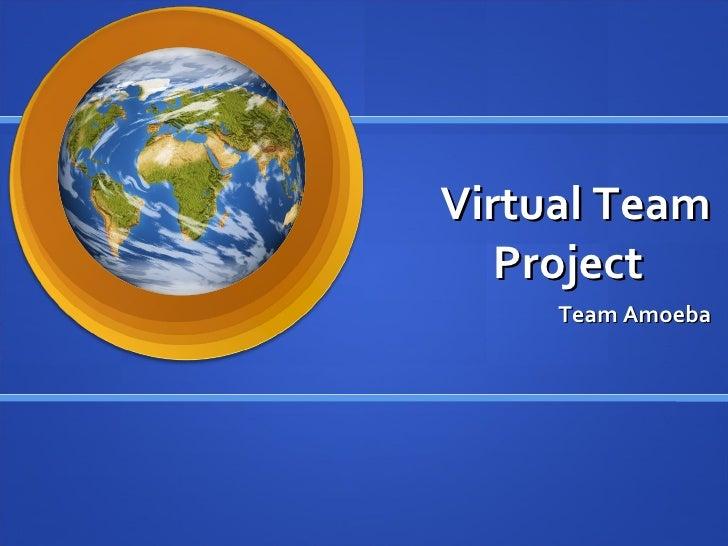 Virtual Team Project Team Amoeba