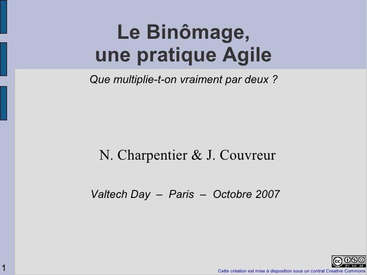 Vtday2007 Binomage