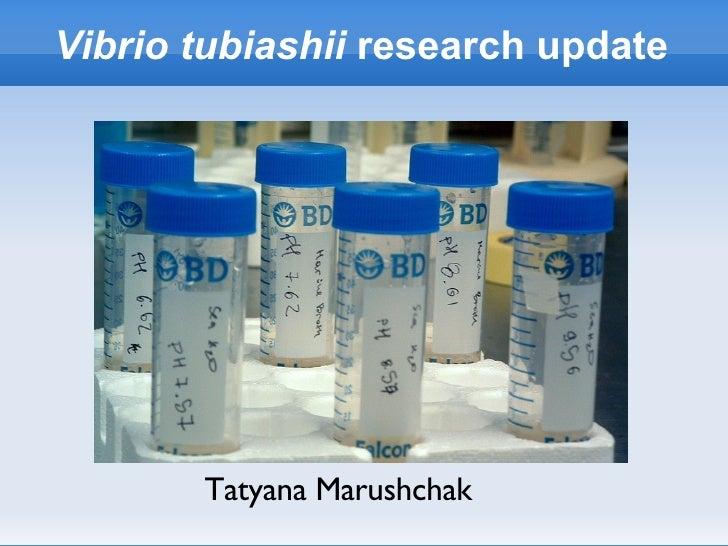 Vibrio tubiashii  research update Tatyana Marushchak