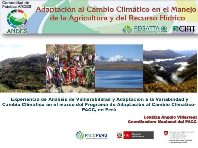 Lenkiza Angulo - Experiencia de Analisis de Vulnerabilidad y Adaptacion a la Variabilidad y Cambio Climatico en el PACC-Peru