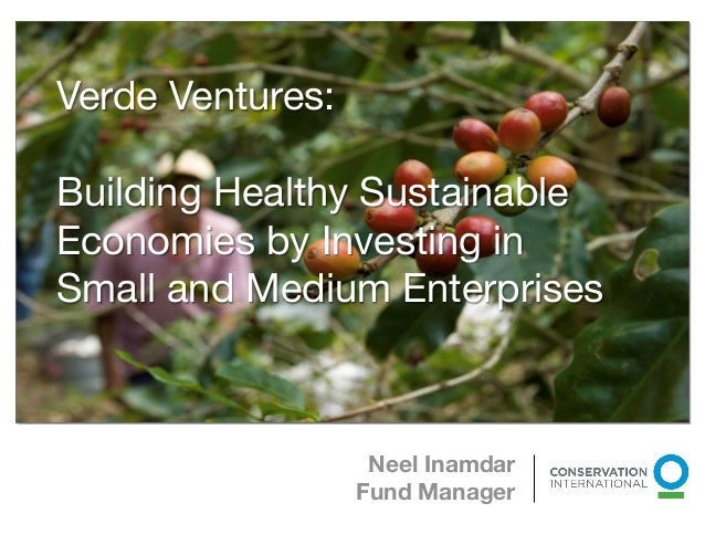 Verde Ventures 2012 Overview