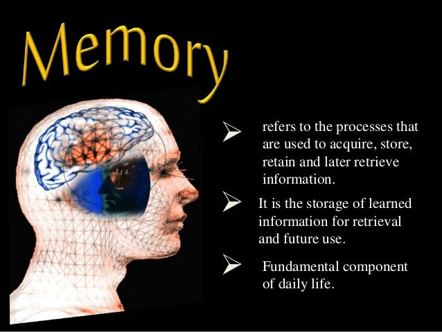 forgetting memory processes Memory (encoding, storage, retrieval) failures can occur at any stage, leading to forgetting or to having false memories the stage in the learning/memory process that bridges encoding and retrieval the persistence of memory over time.