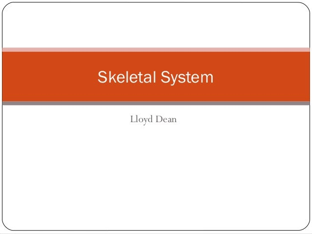 Lloyd Dean Skeletal System
