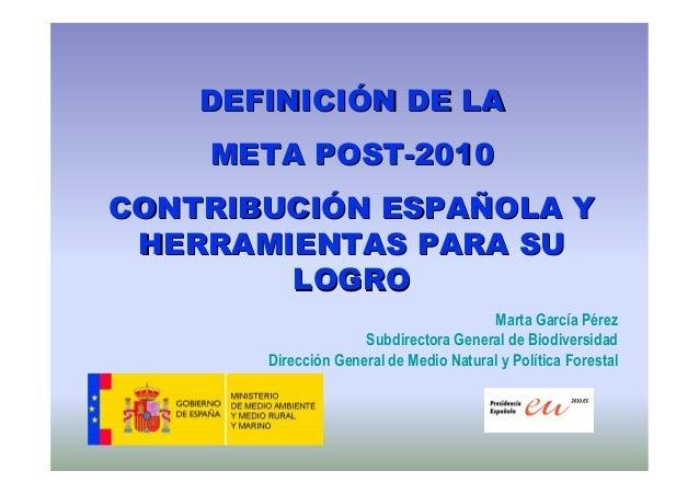 DEFINICIDEFINICIÓÓN DE LAN DE LA META POSTMETA POST--20102010 CONTRIBUCICONTRIBUCIÓÓN ESPAN ESPAÑÑOLA YOLA Y HERRAMIENTAS ...