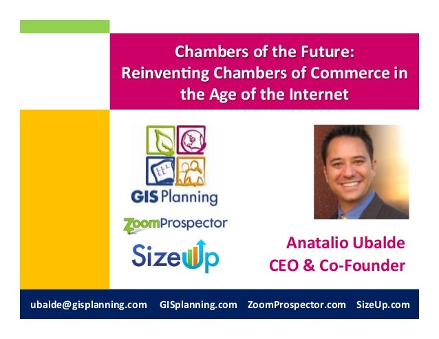 Chambers of the Future: Reinventing Chambers of Commerce in the Age of the Internet