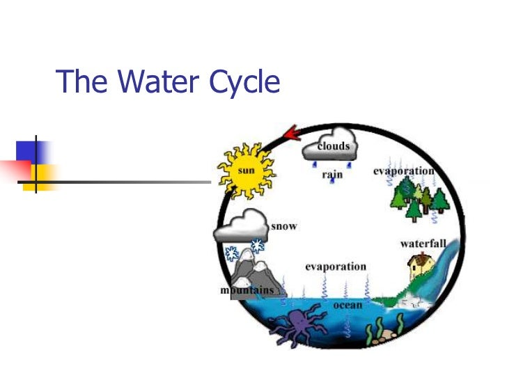 The Water Cycle<br />
