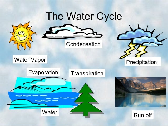 the water cycle condensation water vapor evaporation water ...