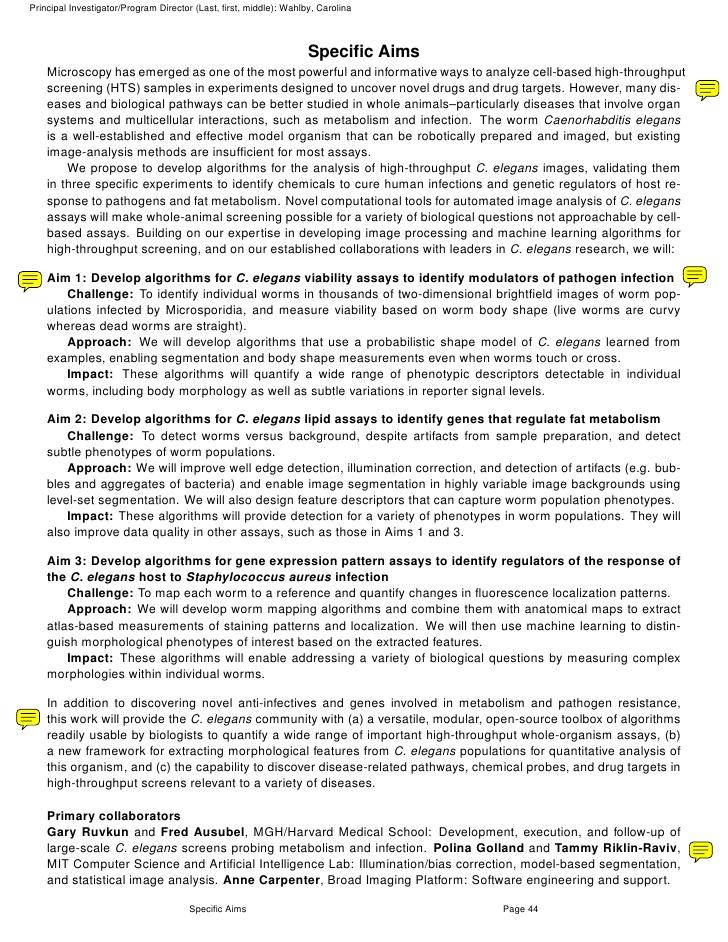 Sample Grant Proposal Template | imemex.org