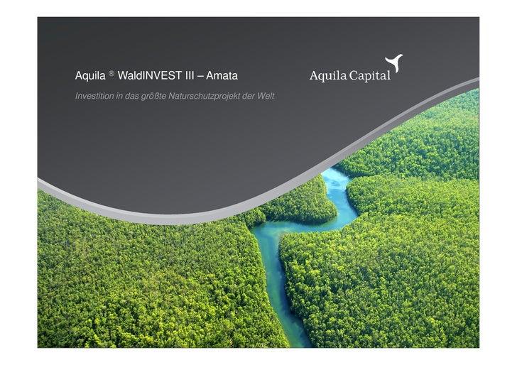 Aquila  WaldINVEST III – Amata Investition in das größte Naturschutzprojekt der Welt