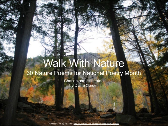 Walk With Nature30 Nature Poems for National Poetry Month                       Chosen and Illustrated                    ...