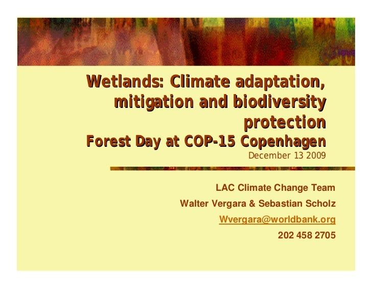 Wetlands: Climate adaptation,   mitigation and biodiversity                    protection Forest Day at COP-15 Copenhagen ...