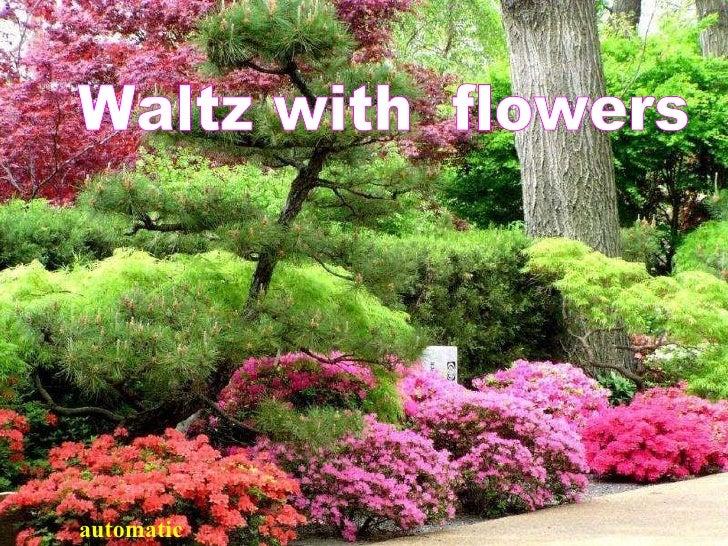 Waltz with flowers