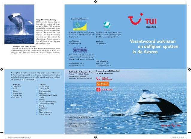 Verantwoord walvissenen dolfijnen spottenin de AzorenIn samenwerking metMeer informatie:www.dolphinfund.euwww.jaarvandedol...
