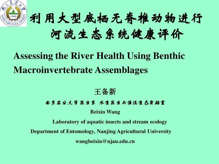 利用大型底栖无脊椎动物进行    河流生态系统健康评价Assessing the River Health Using BenthicMacroinvertebrate Assemblages                          ...
