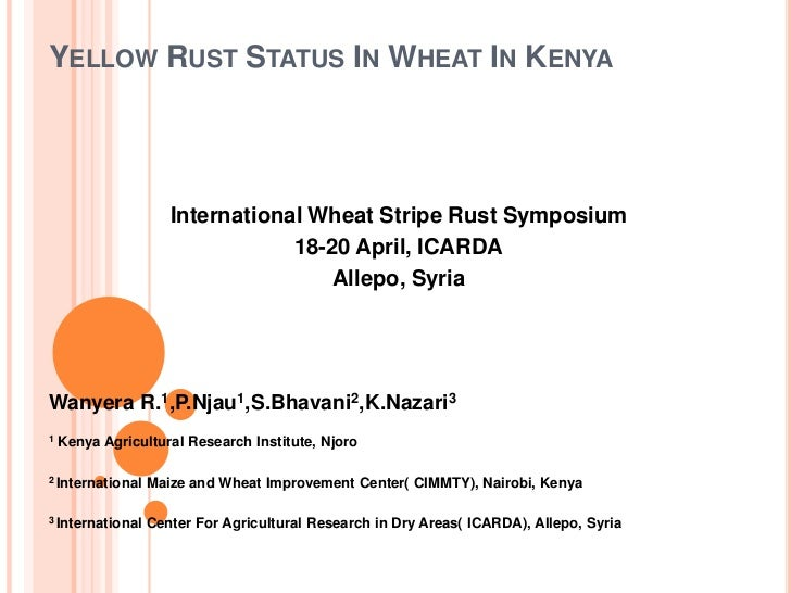 Yellow Rust Status In Wheat In Kenya