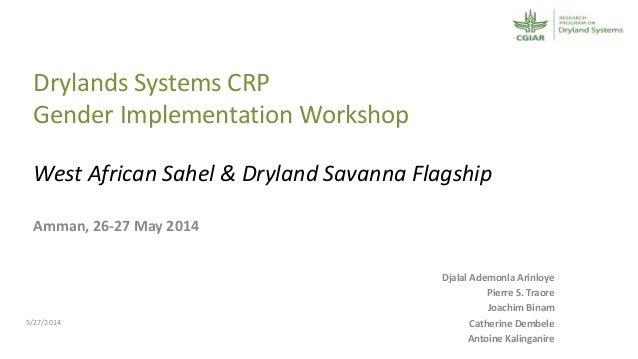 Was and ds ds crp gender implementation workshop