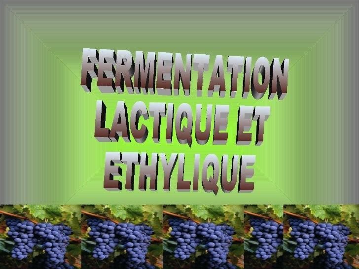 Fermentation Lactique et Ethilyque