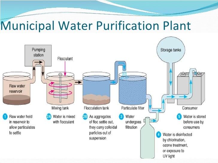 sewage water treatment process pdf