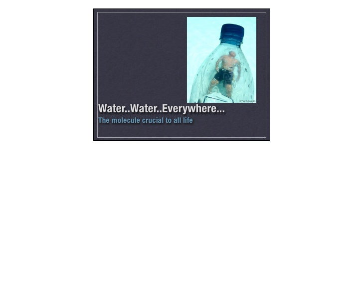 Water..Water..Everywhere... The molecule crucial to all life