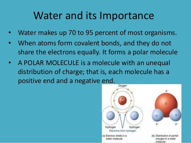 Water and life substances